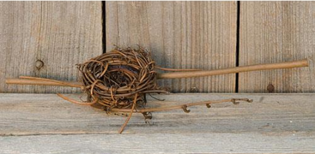 Twig Birdnest With Forked Stems - 2 Inch